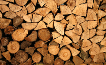 Forest products industry trends